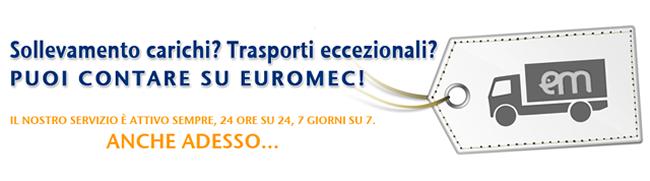 Servizi-Euromec1-bis